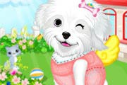 game Fluffy Puppy Pet Spa And Care