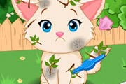 game Lovely Kitten Caring