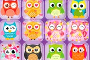 Owl Match Game