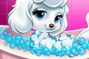 Princess Pet Grooming