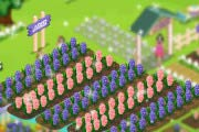 Game Provence Lavender