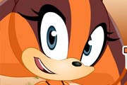 game Sonic Boom Sticks The Badger