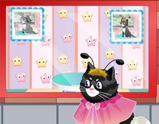 Game Cat Salon
