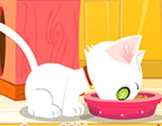Game Virtual Cat